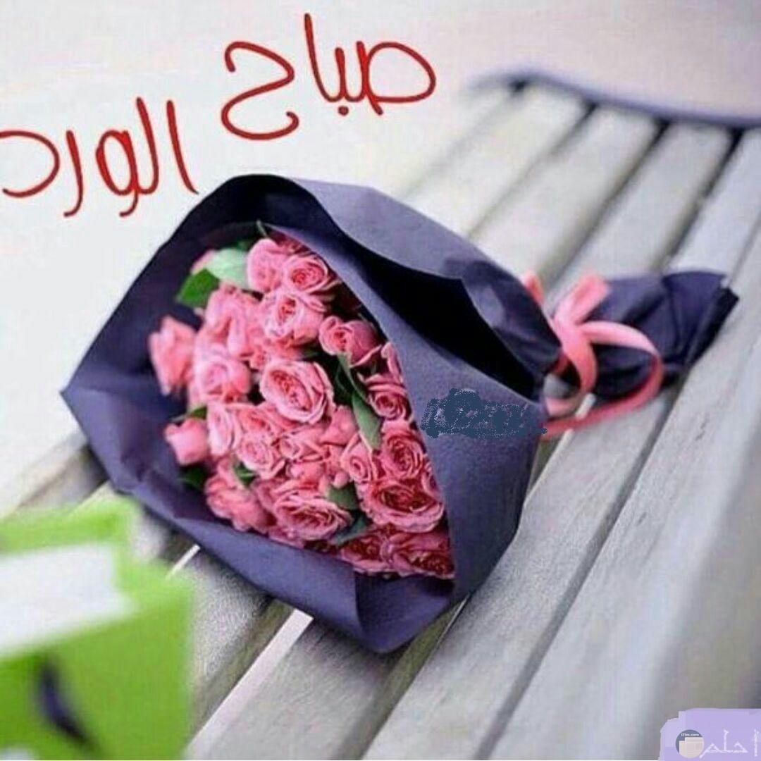 صورة صباح الورد و الخير.