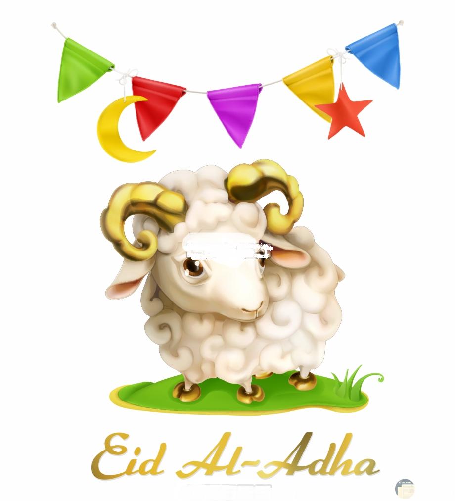 زينة و كبش عيد الاضحى المبارك.