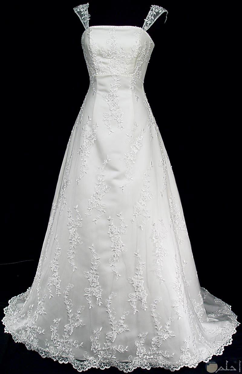 فستان زفاف قط بسيط