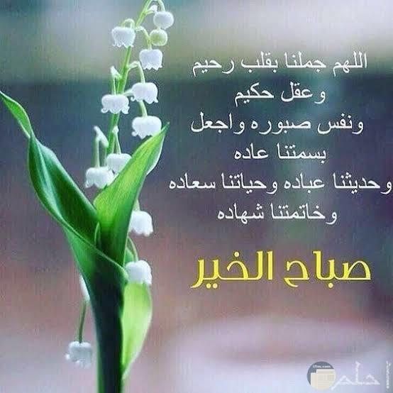 اللهم جملنا بالقلب الرحيم