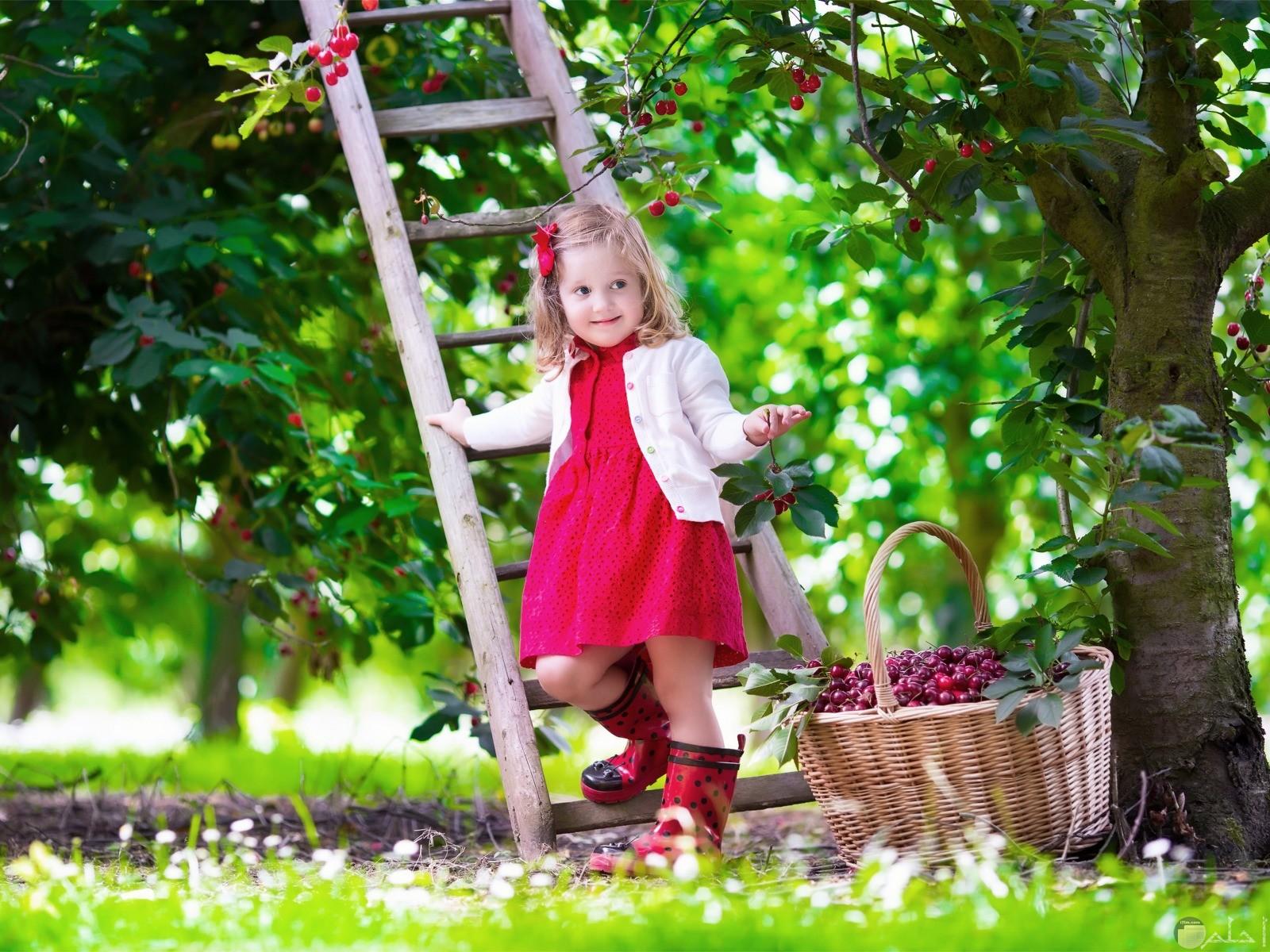 صورة بنت فى حديقة.