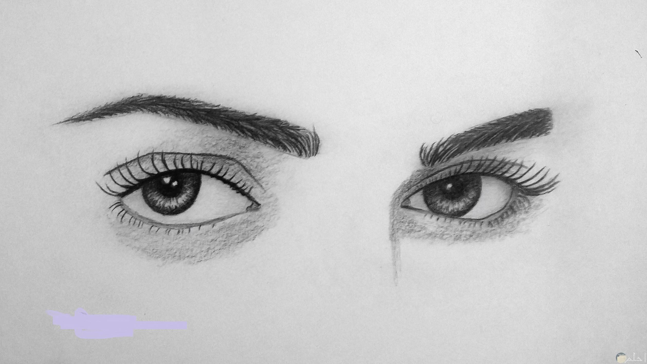 صورة عيون فتاة مرسومة بالقلم الرصاص.