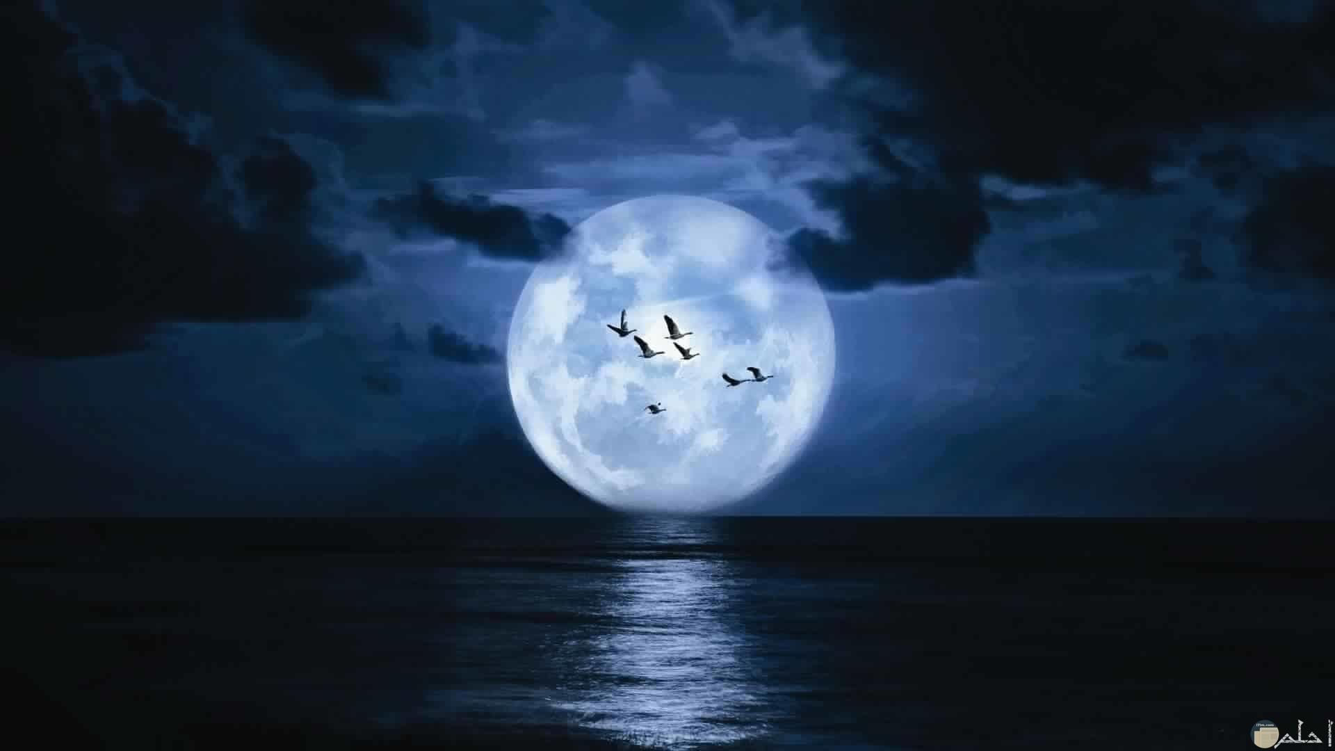 قمر وبحر وليل من اجمل الصور للقمر