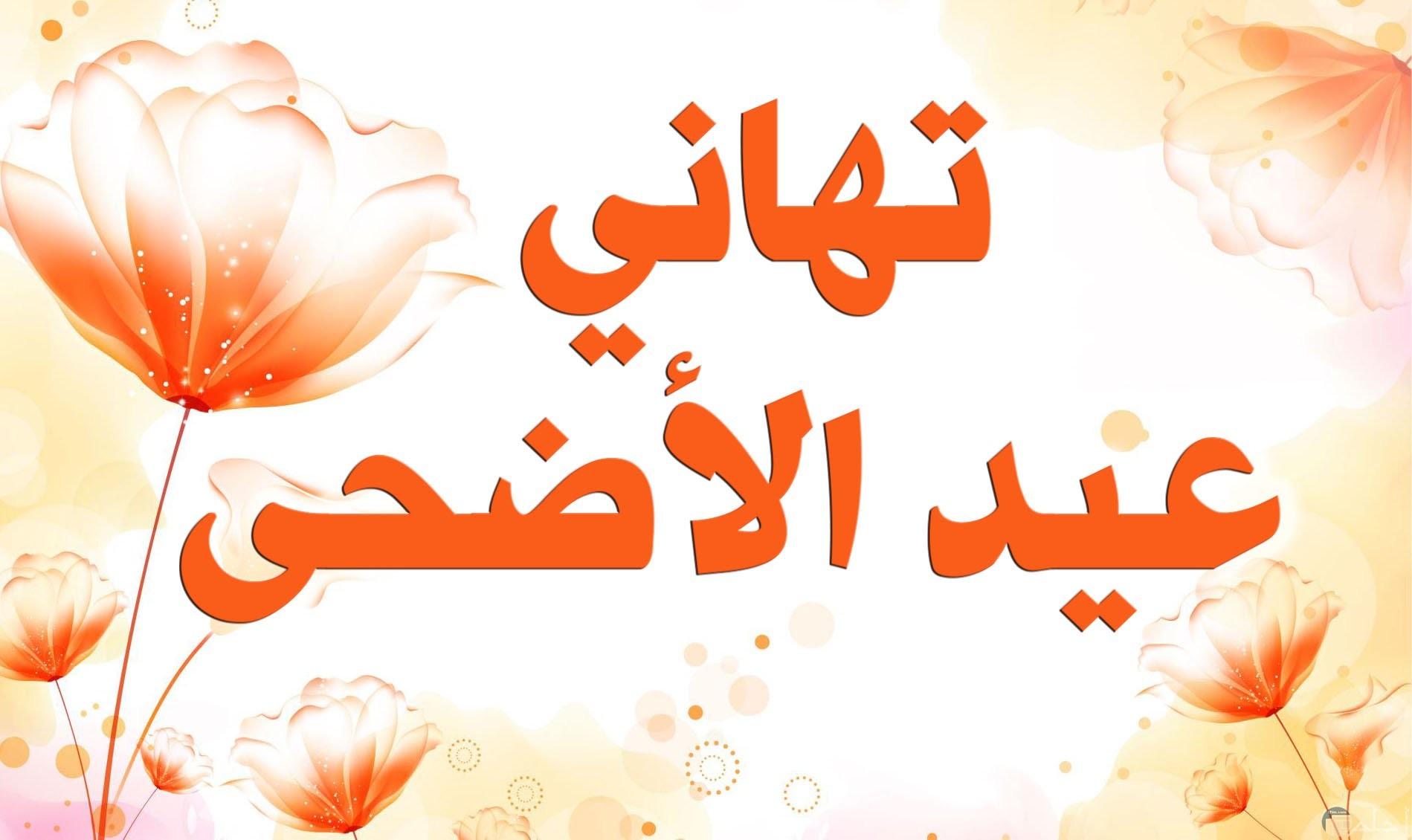 التهانى بمناسبة عيد الاضحى المبارك.