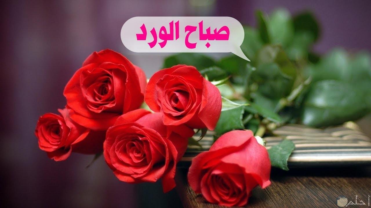 صورة صباح الورد بالخير.