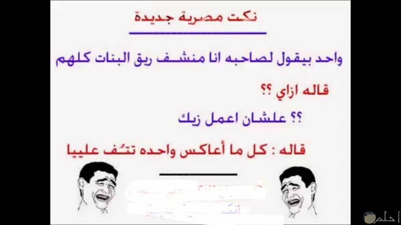 صورة نكتة مصرية و معاكسة البنات.