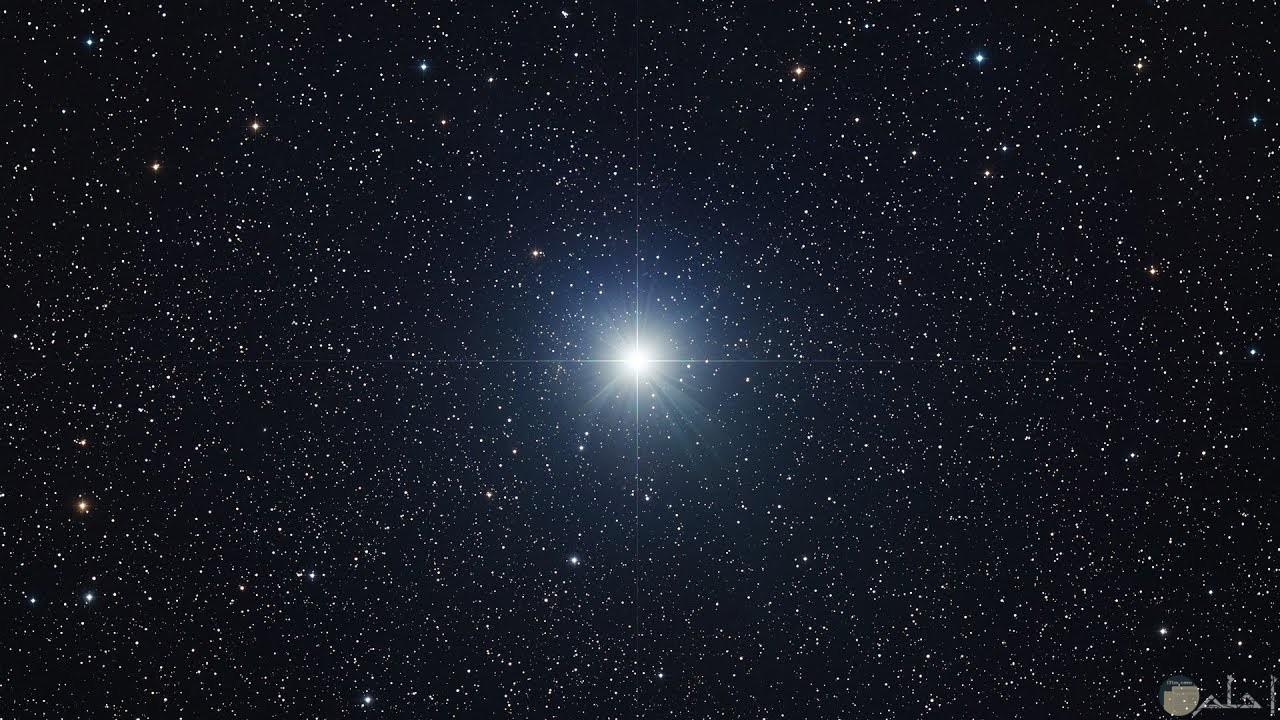احدى النجوم الامعه بشكل كبير في السماء