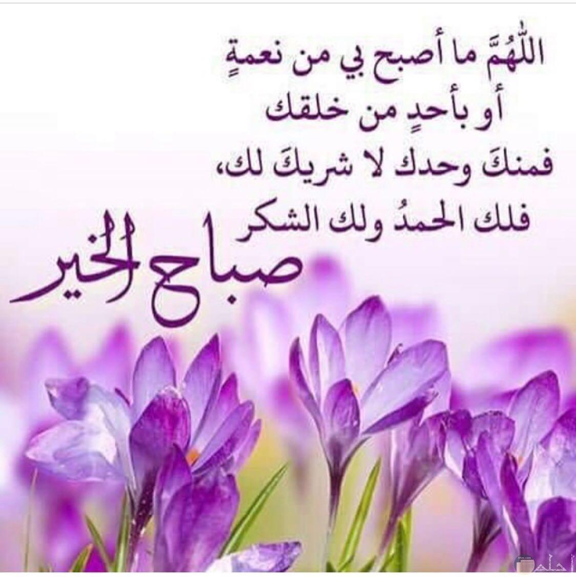 اللهم ما اصبح من نعمة او بأحد من خلقك فمنك وحدك