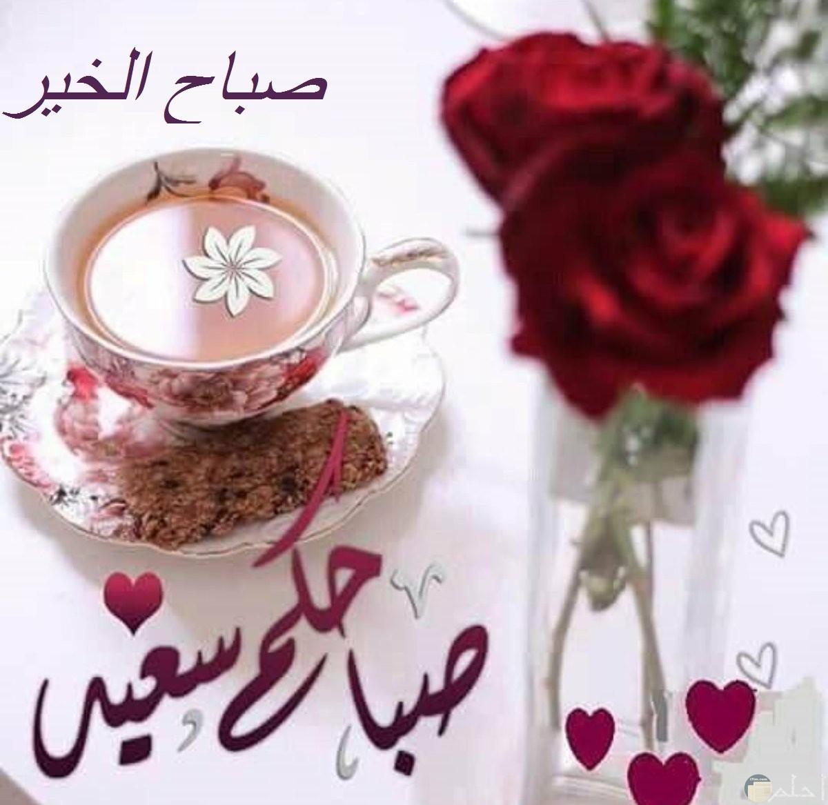 صباح الورد و الخير و السعادة.