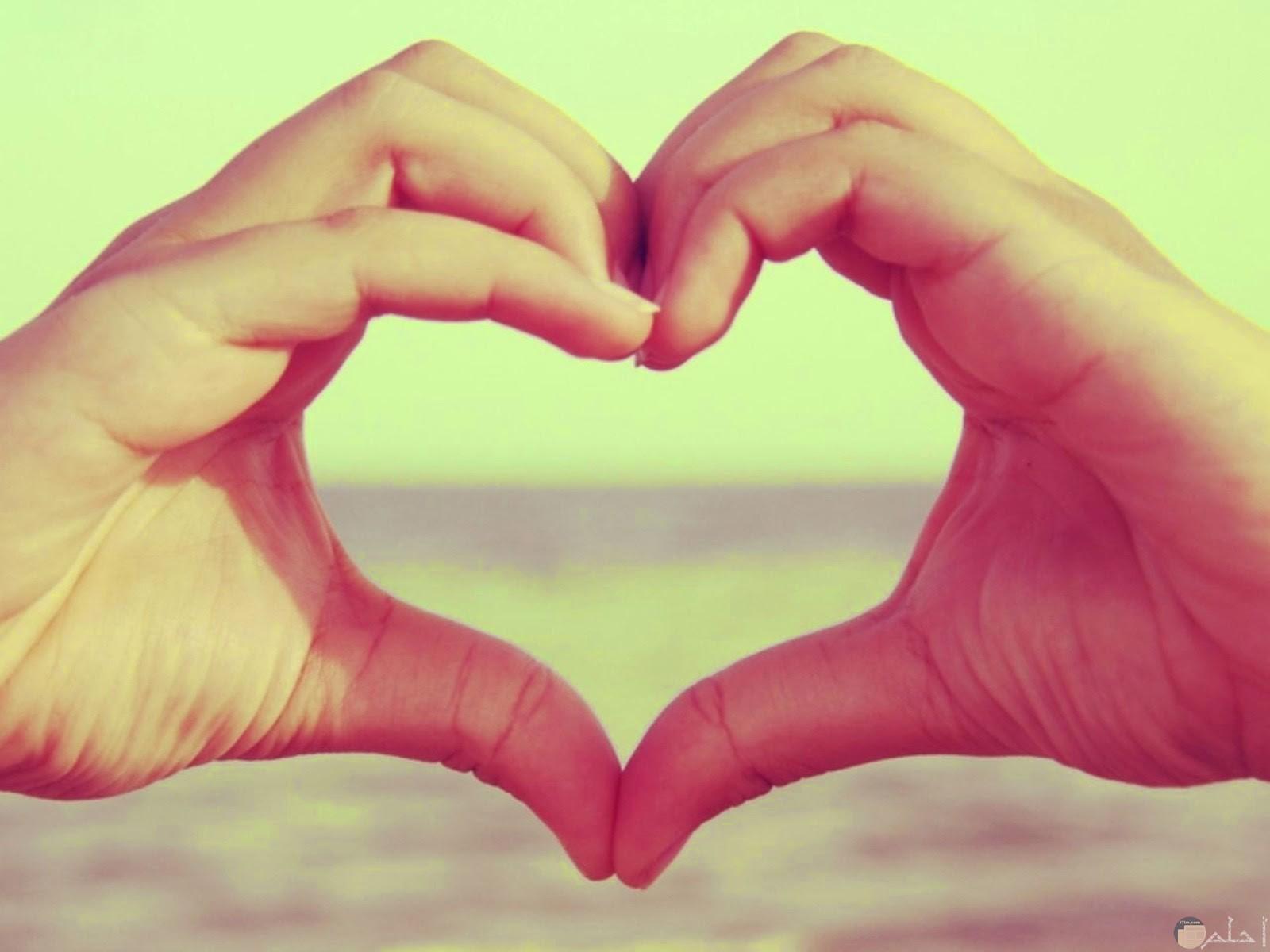 قلب رائع من اليد