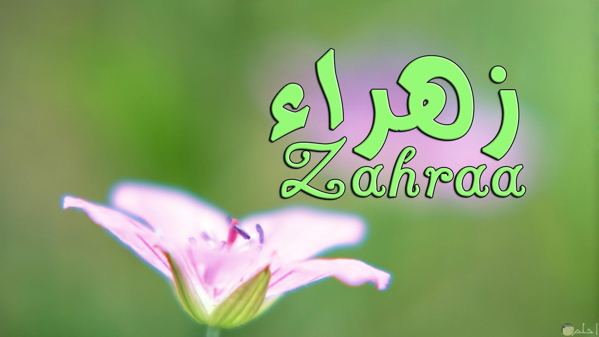 صورة لاسم زهراء بالعربية و الانجليزية معاً.