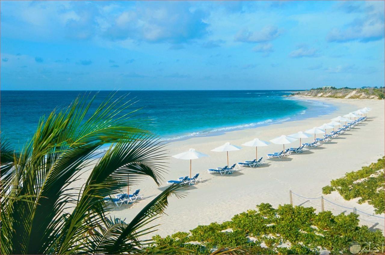 من اروع صور الشواطئ