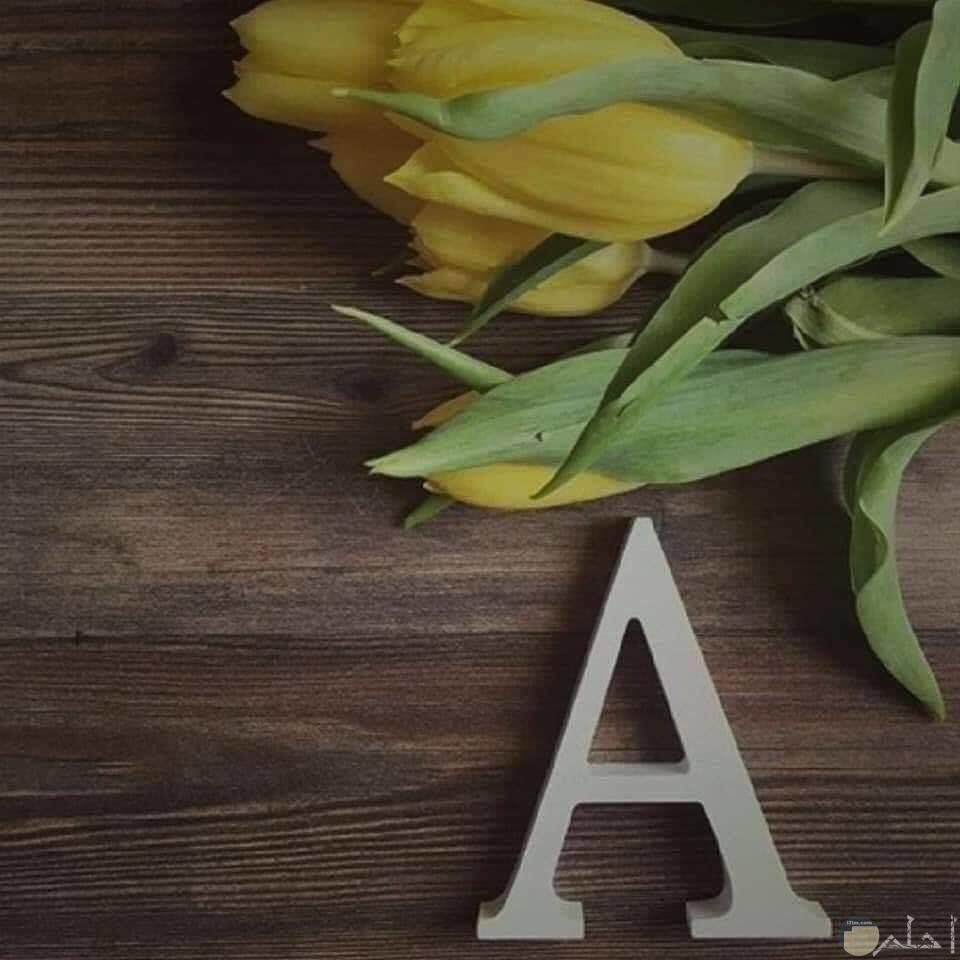حرف ال A مع ورد اصفر