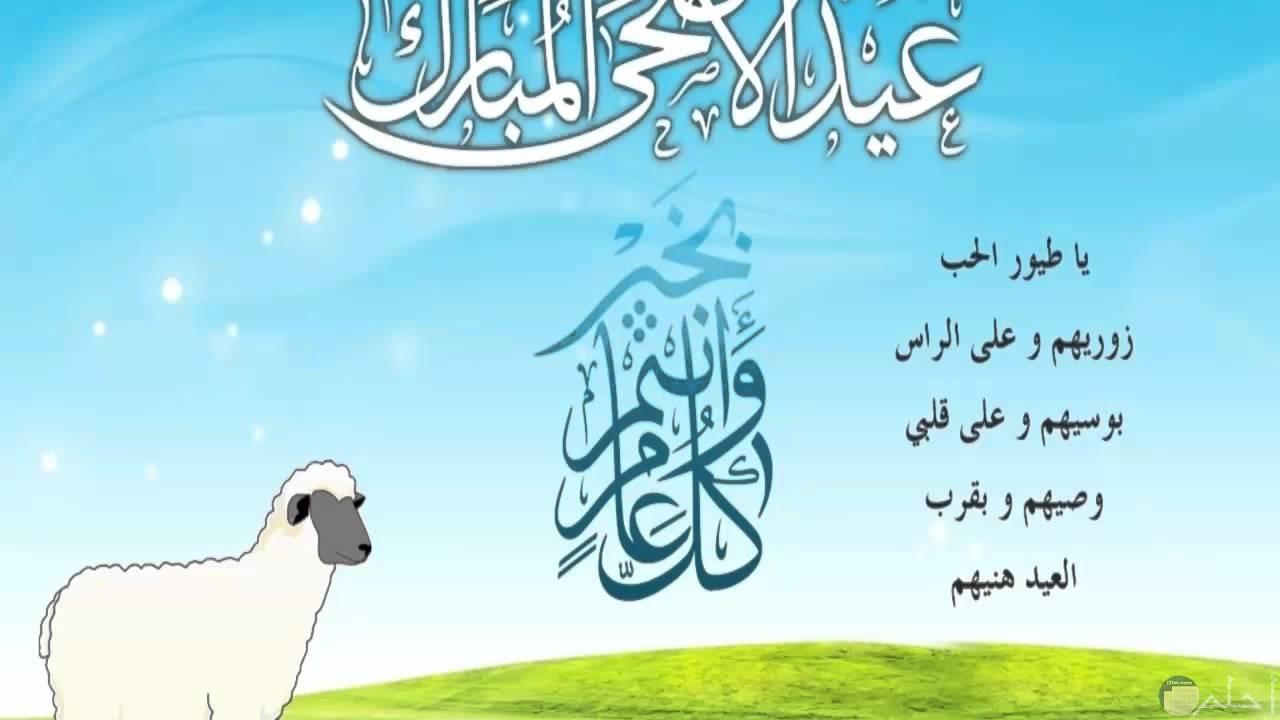 موسم عيد الاضحى المبارك كله خيراً.