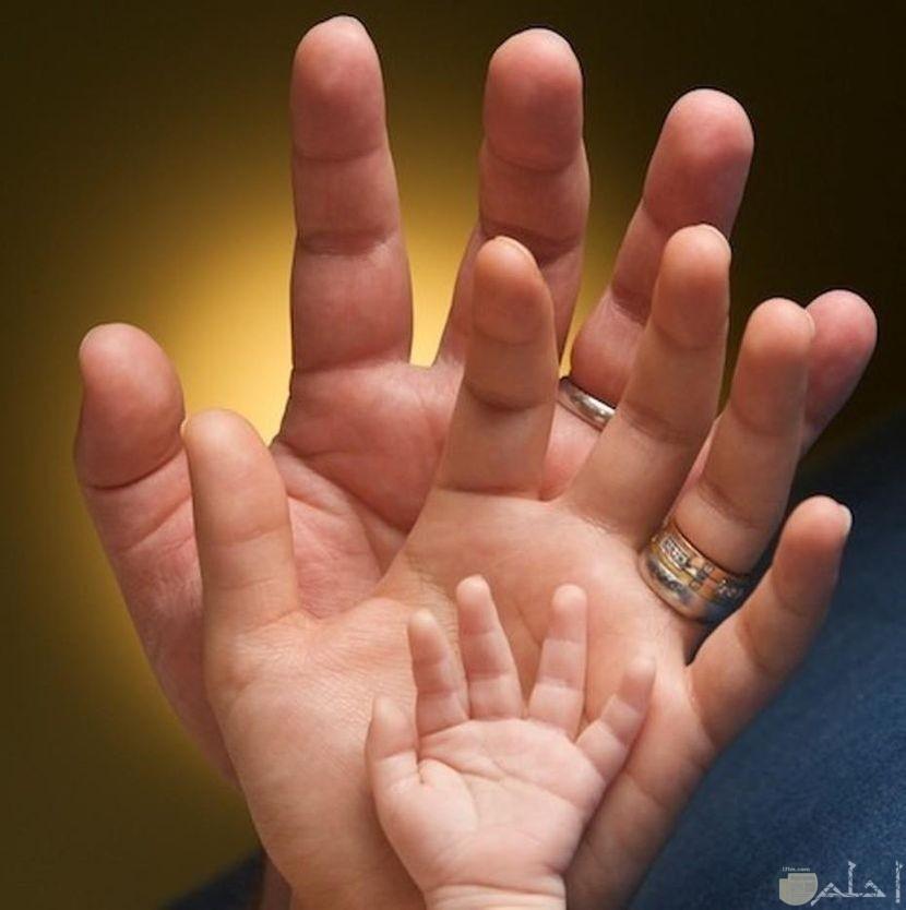 رمزيات عائلية