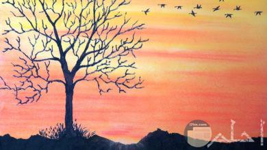 رسم للطبيعة ملون، فصل الخريف و غروب الشمس.