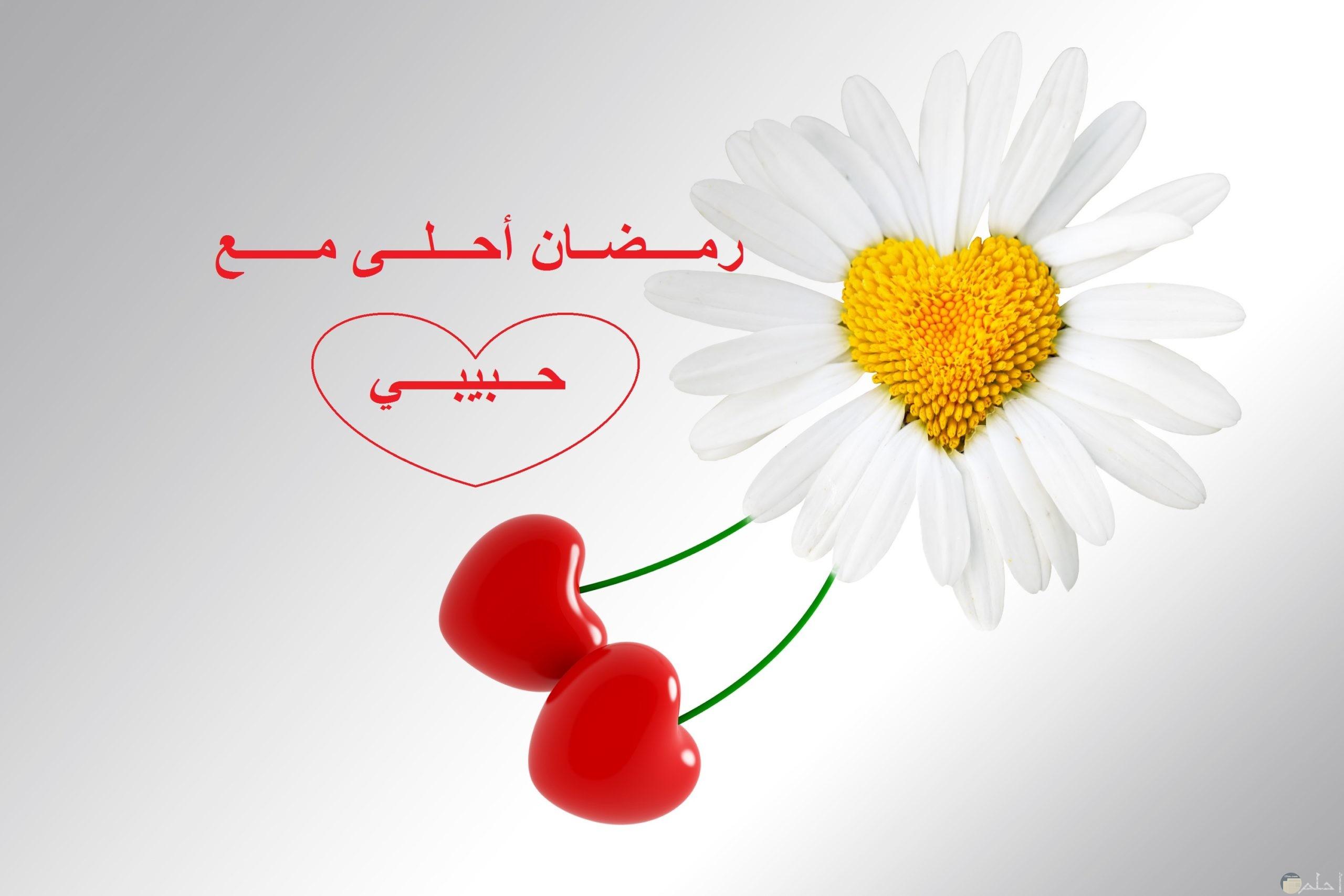 وردة بيضاء و قلبين، رمضان أحلى مع حبيبي.