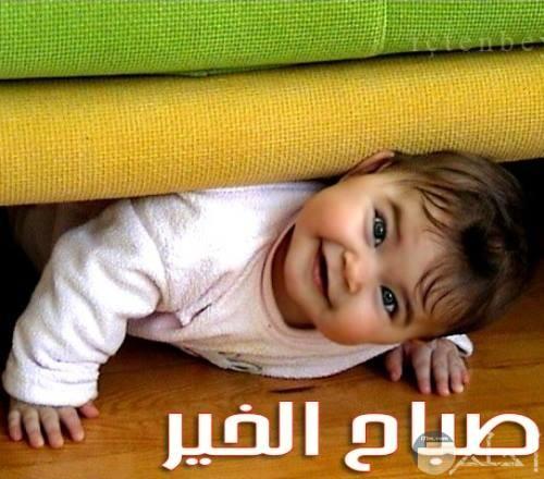 بيبي بنت جميلة مع صباح الخير