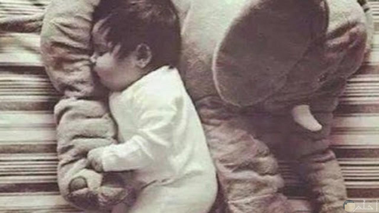صورة بروفايل لطفل نائم يحتضن لعبته.