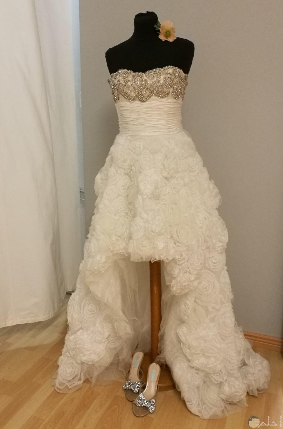 فستان قصير من الامام وطويل من الخلف