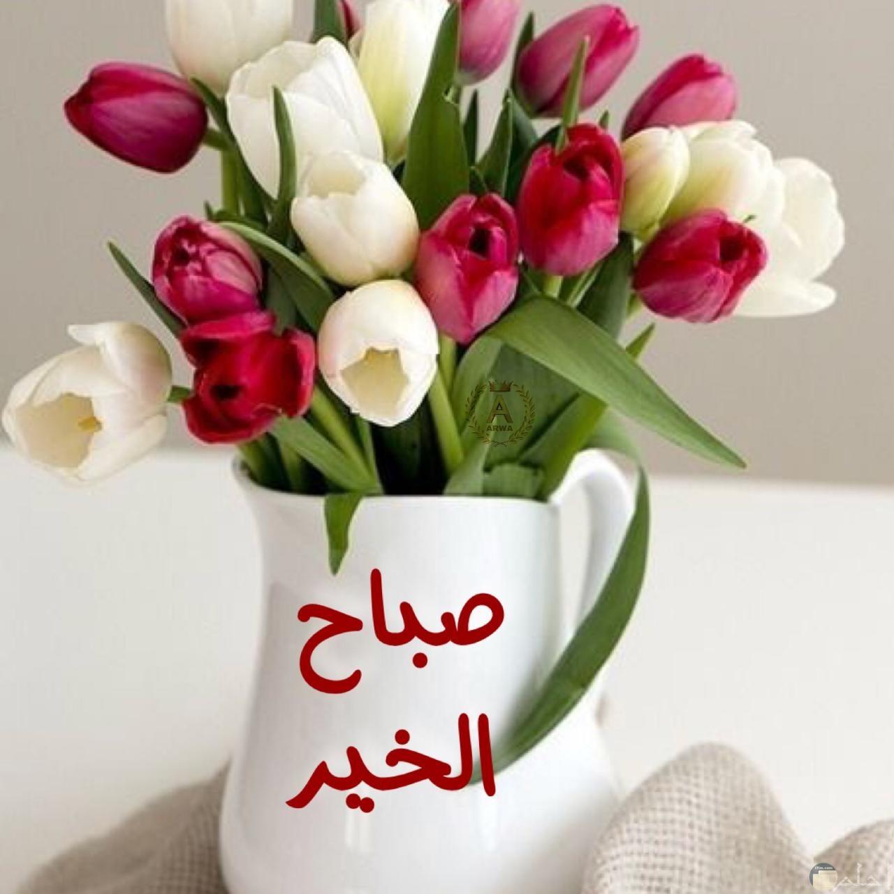 صورة صباح الخير و باقة ورد.