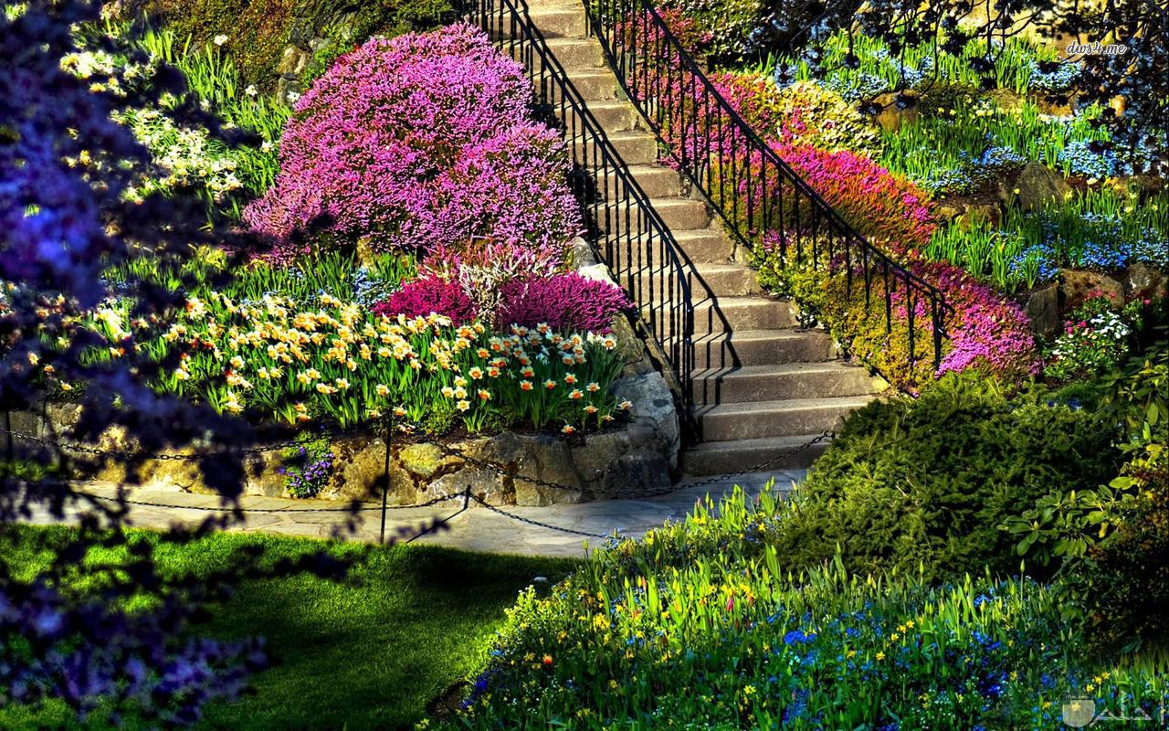 من اروع الحدائق