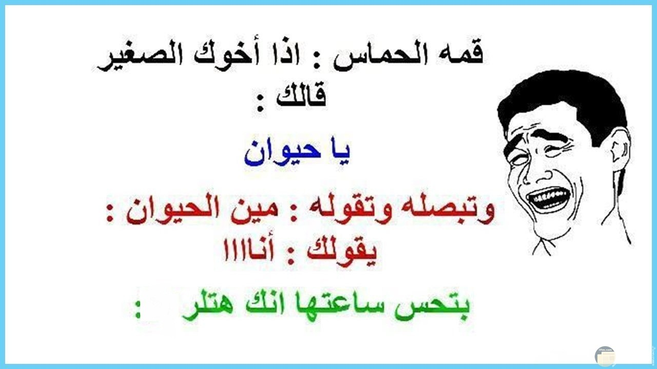 صورة نكتة حماس شاب و اخوه الصغير.