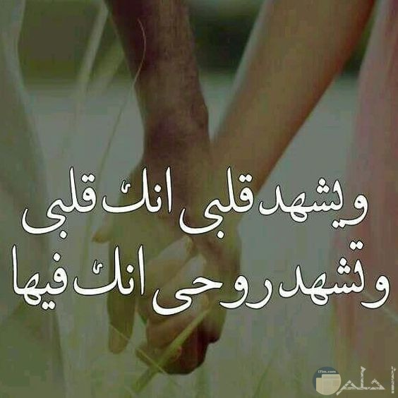 رسالة حب في صورة