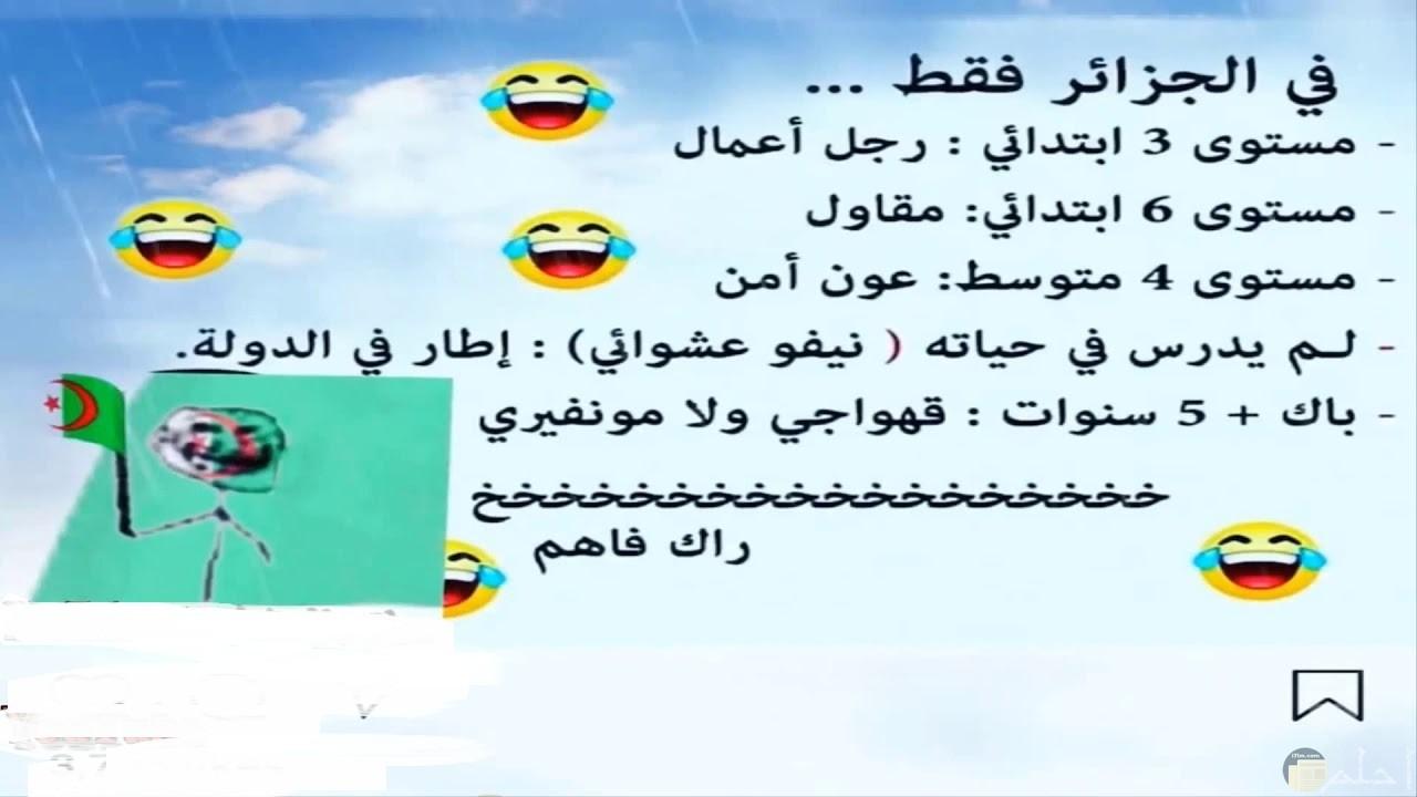 صورة نكتة جزائرية للتعليم و التوظيف.