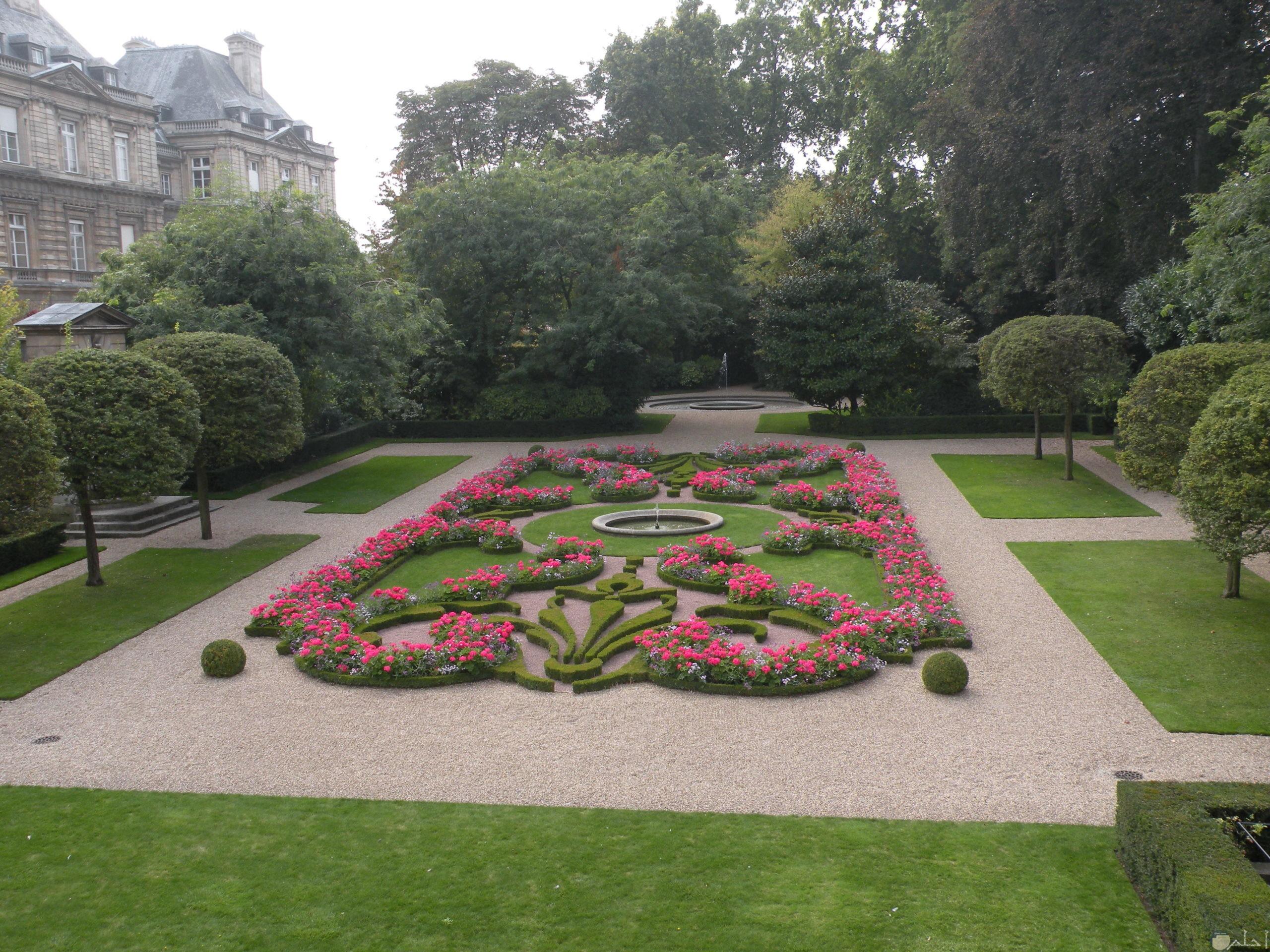 رسومات جميلة للازهار داخل حديقة