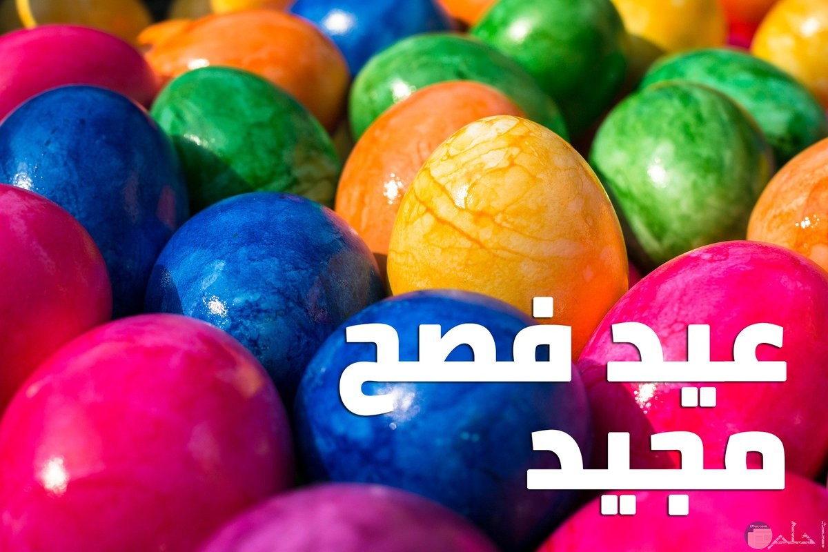 عيد فصح مجيد.