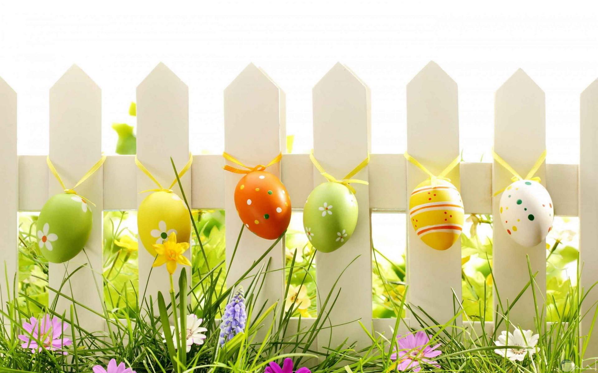 خلفيات روعة لعيد الربيع.