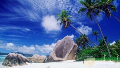 جمال نخير الشواطئ الرملية و روعة الطبيعة.