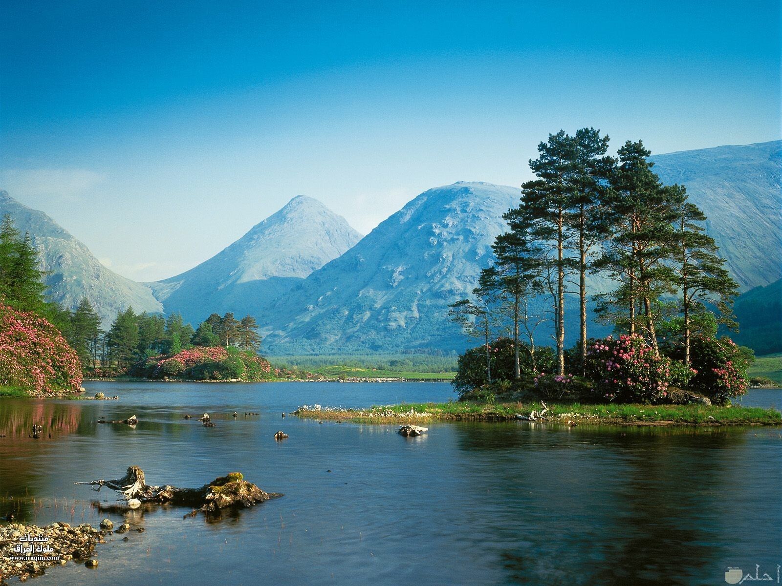 منظر طبيعي لنهر و شجر و جبال روعة.