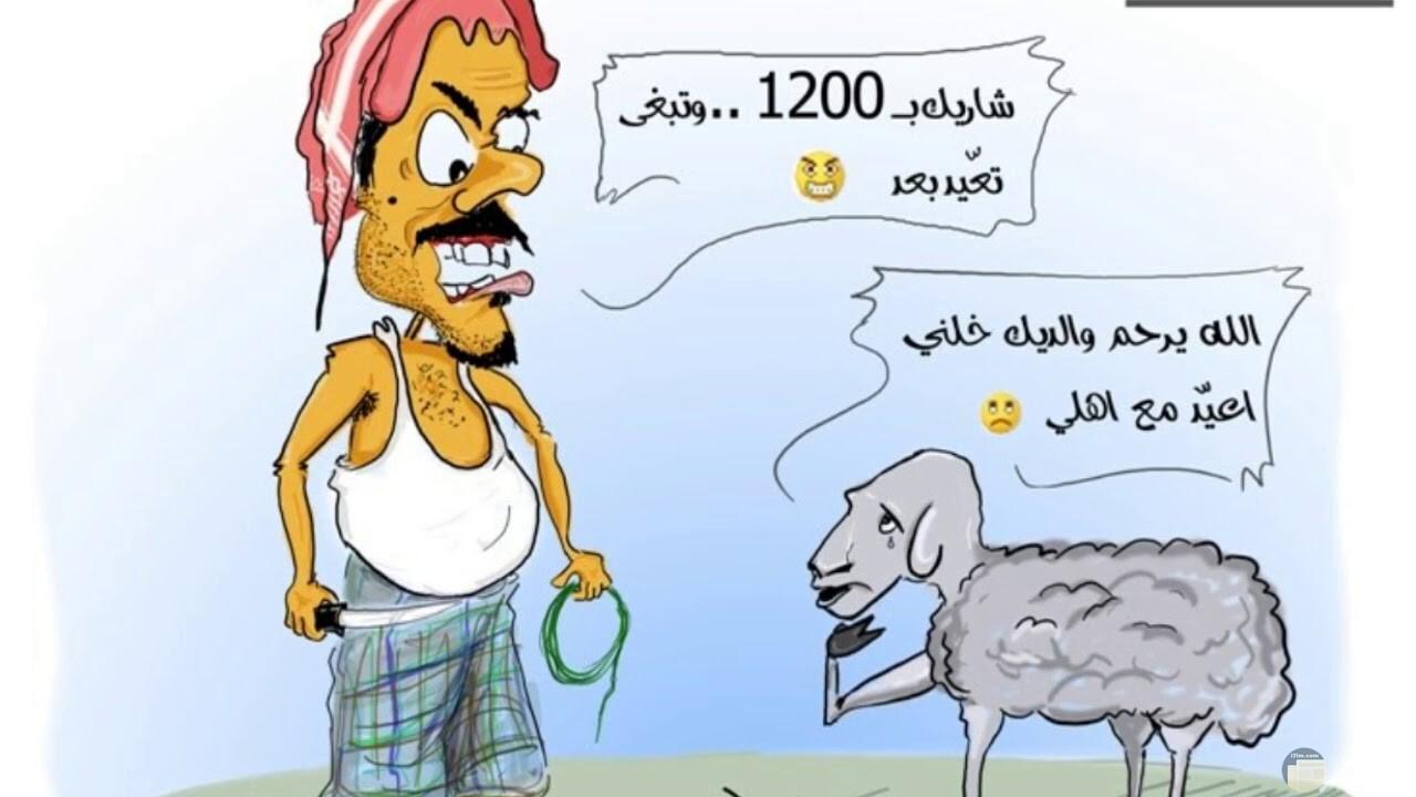 كاريكاتير عن أسعار خروف العيد.