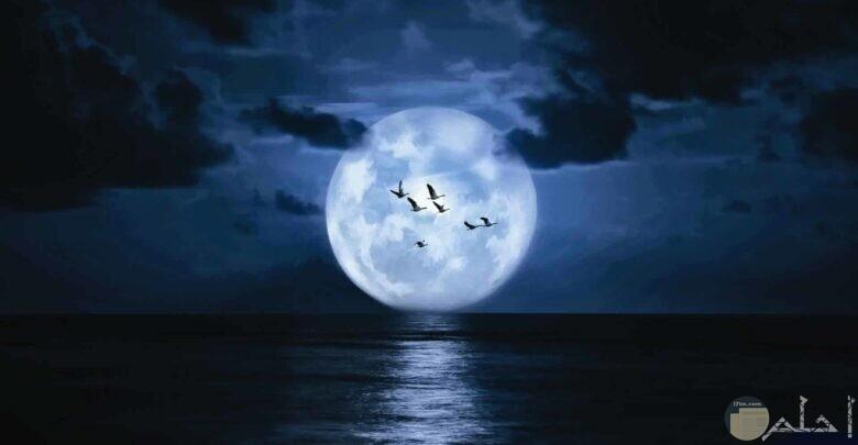 القمر بدراً فى السماء.