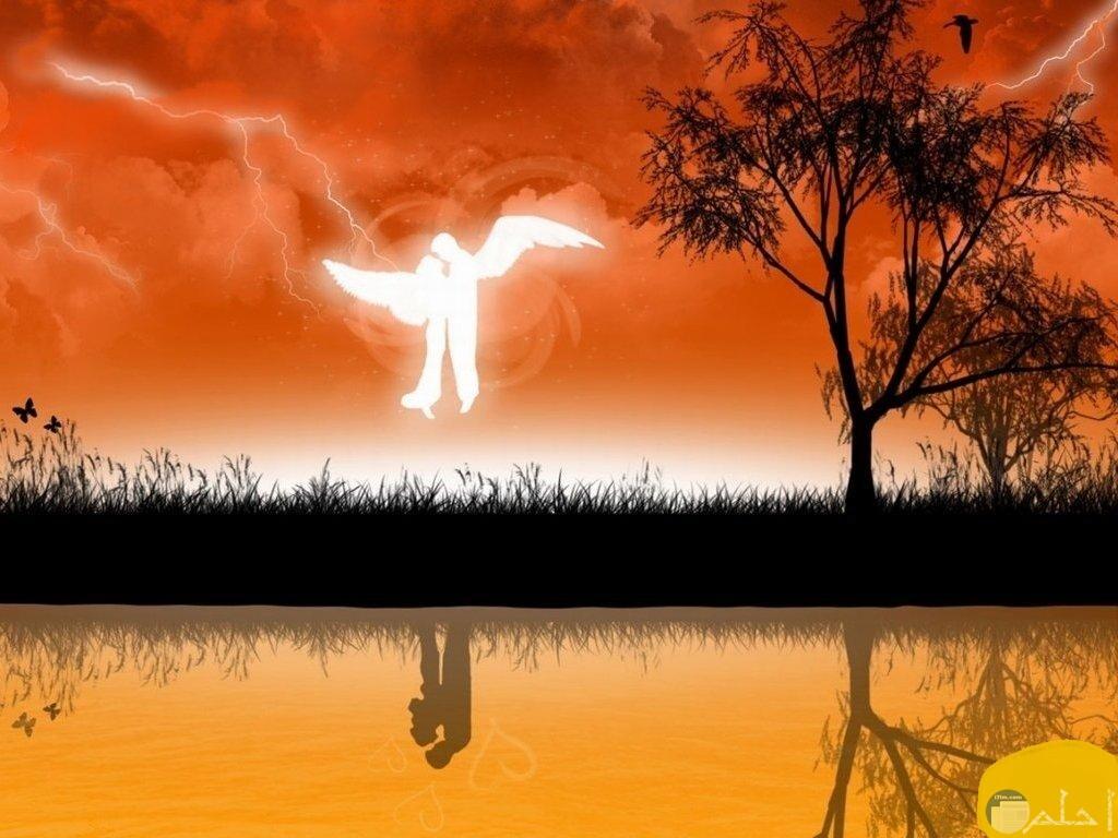 ملائكة الحب مع غروب الشمس.