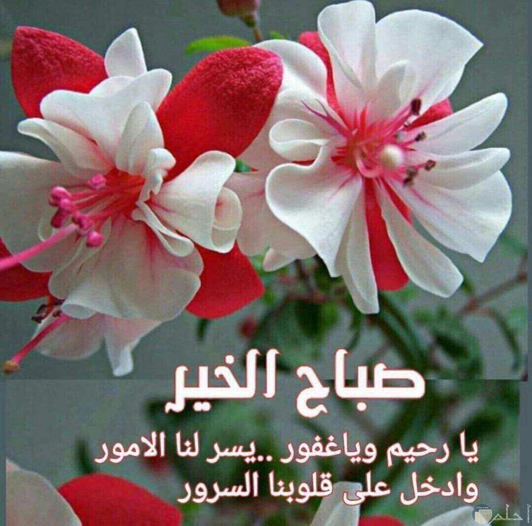 صباح الخير يا رحيم ويا غفور يسر لنا الامور وادخل على قلوبنا السرور
