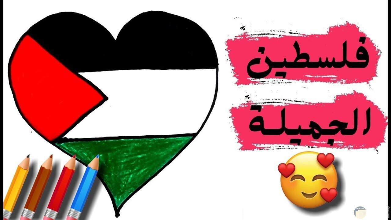 فلسطين الجميلة