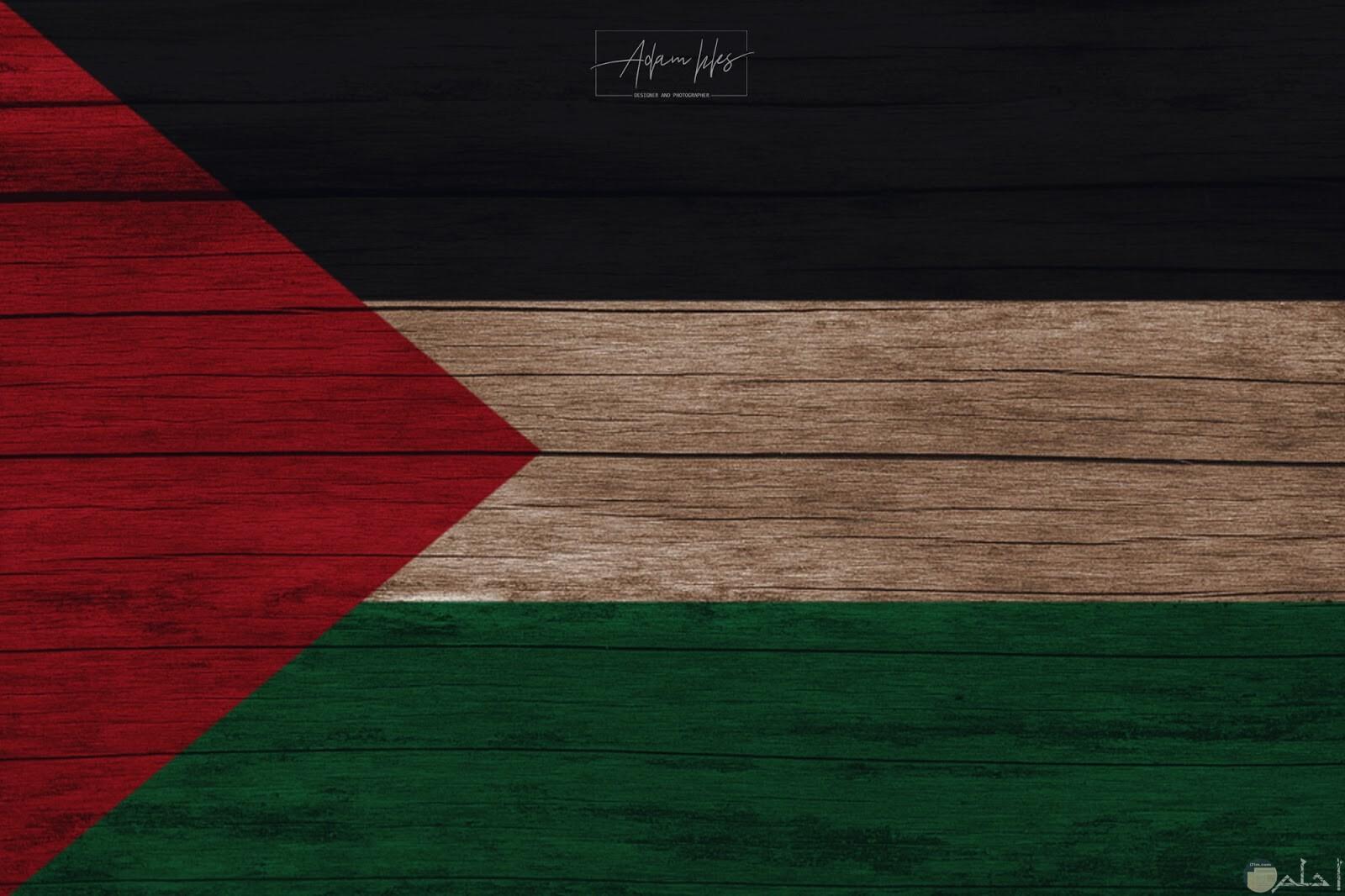 صورة رائعة لعلم فلسطين