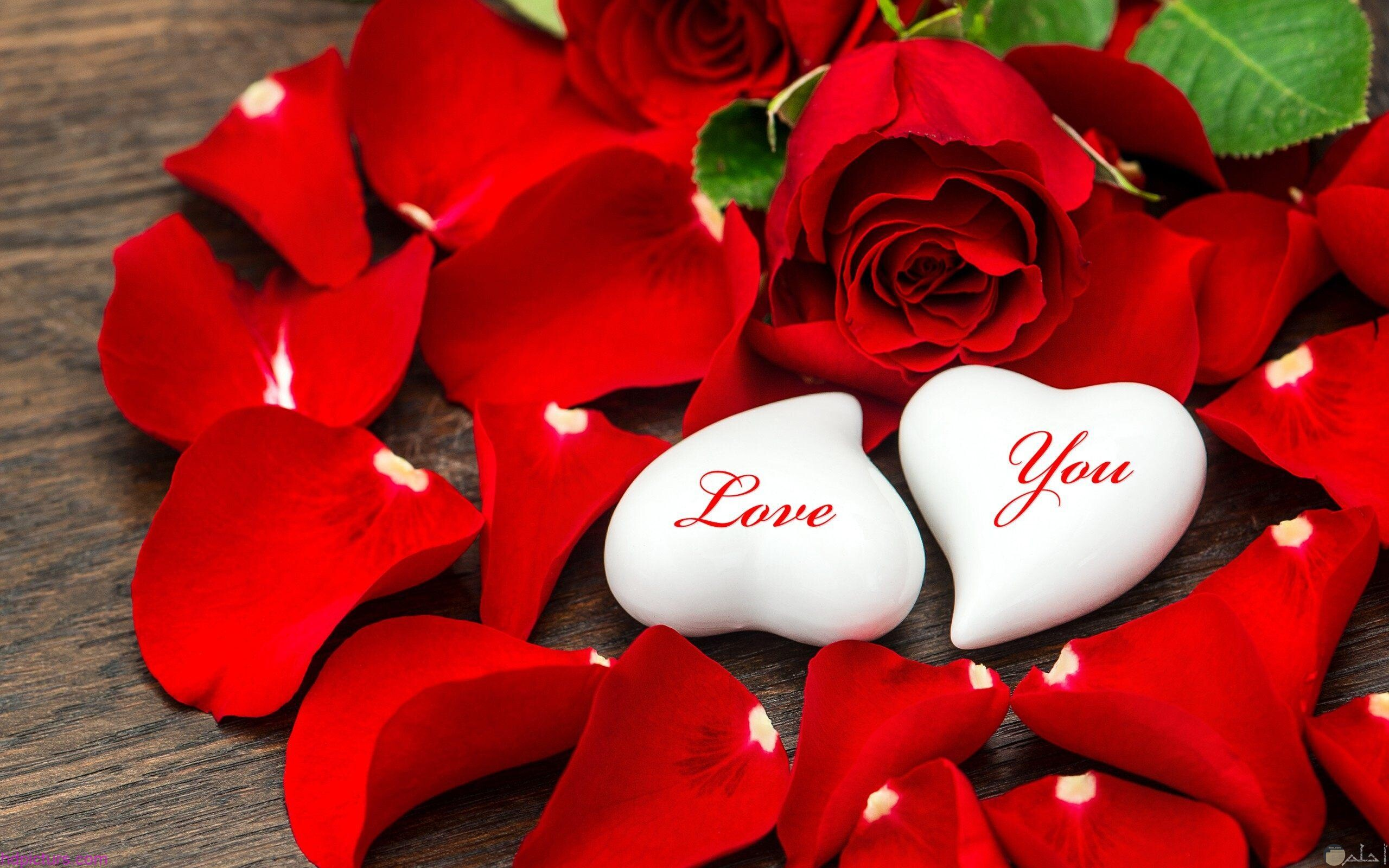 قلوب بيضاء وورد