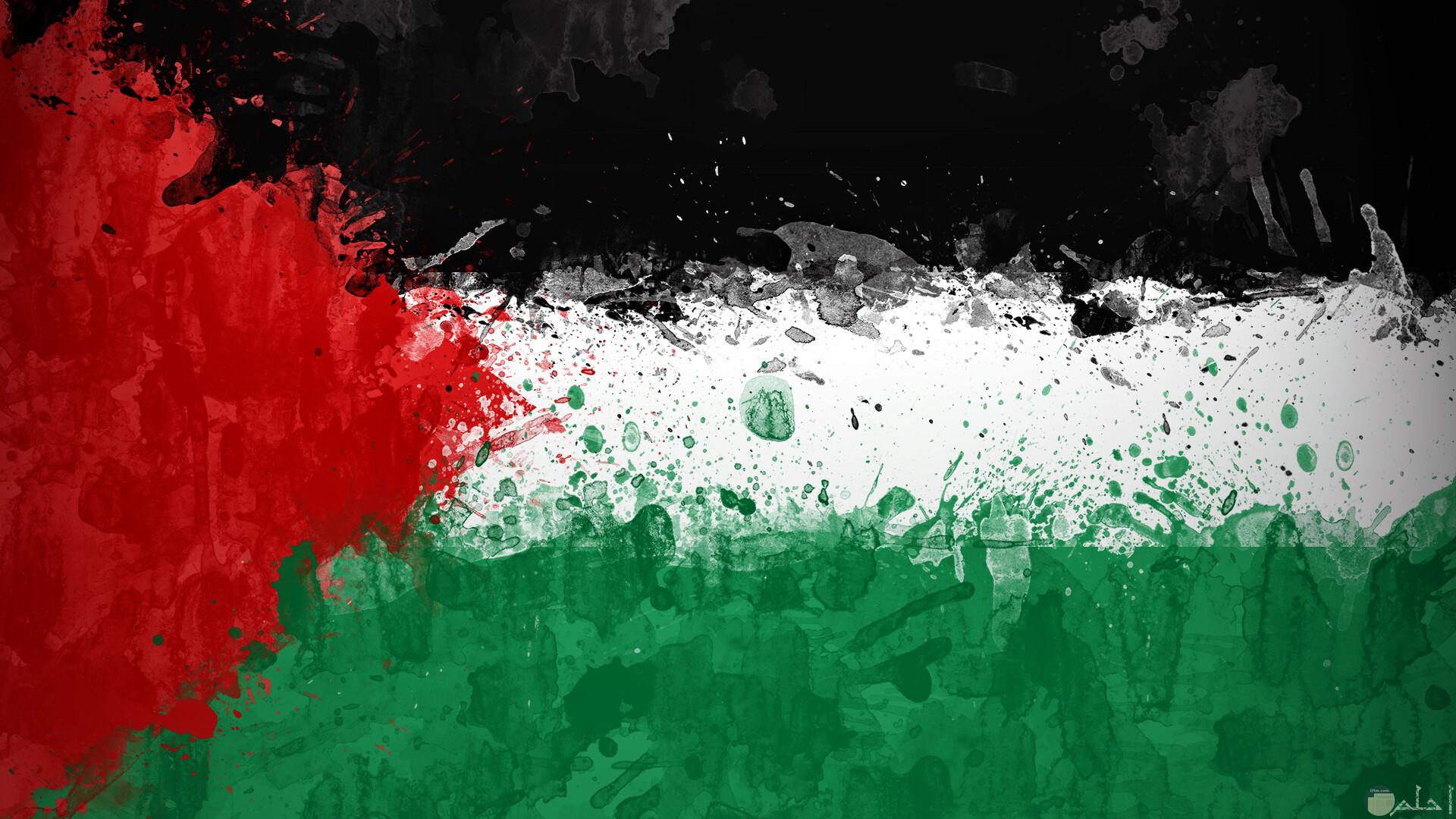 صورة مرسومة وملونه بطريقة جميلة لعلم فلسطين