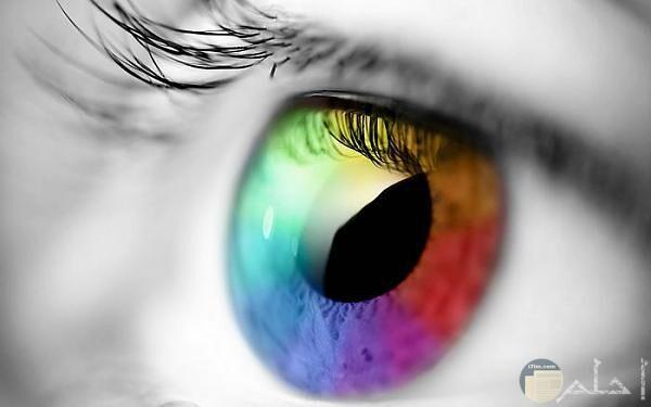 صورة عين ملونه خيالية