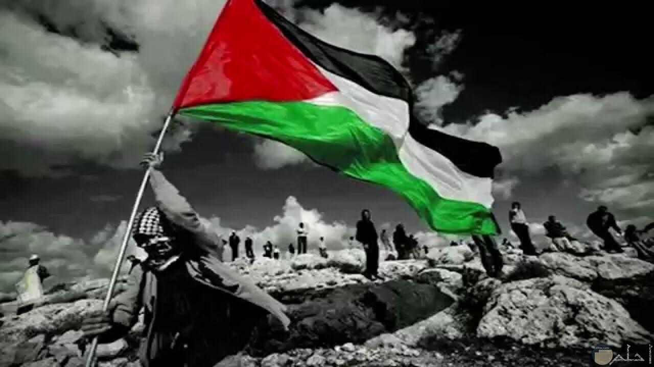 في سماء فلسطين يرفرف العلم