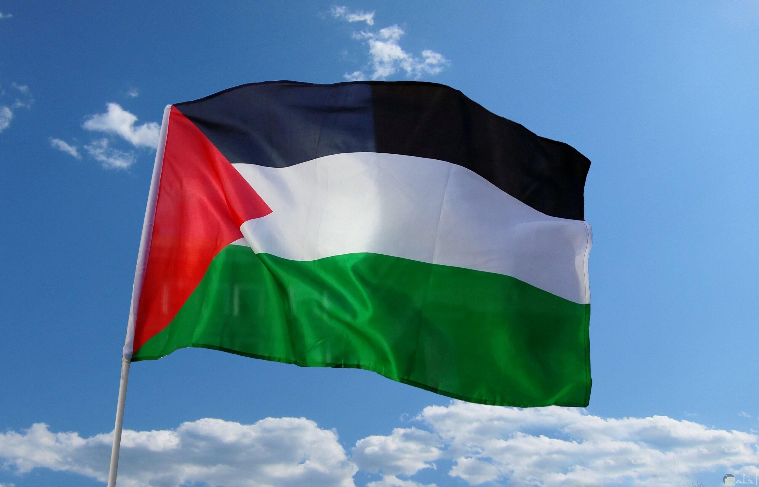 خلفية لعلم فلسطين