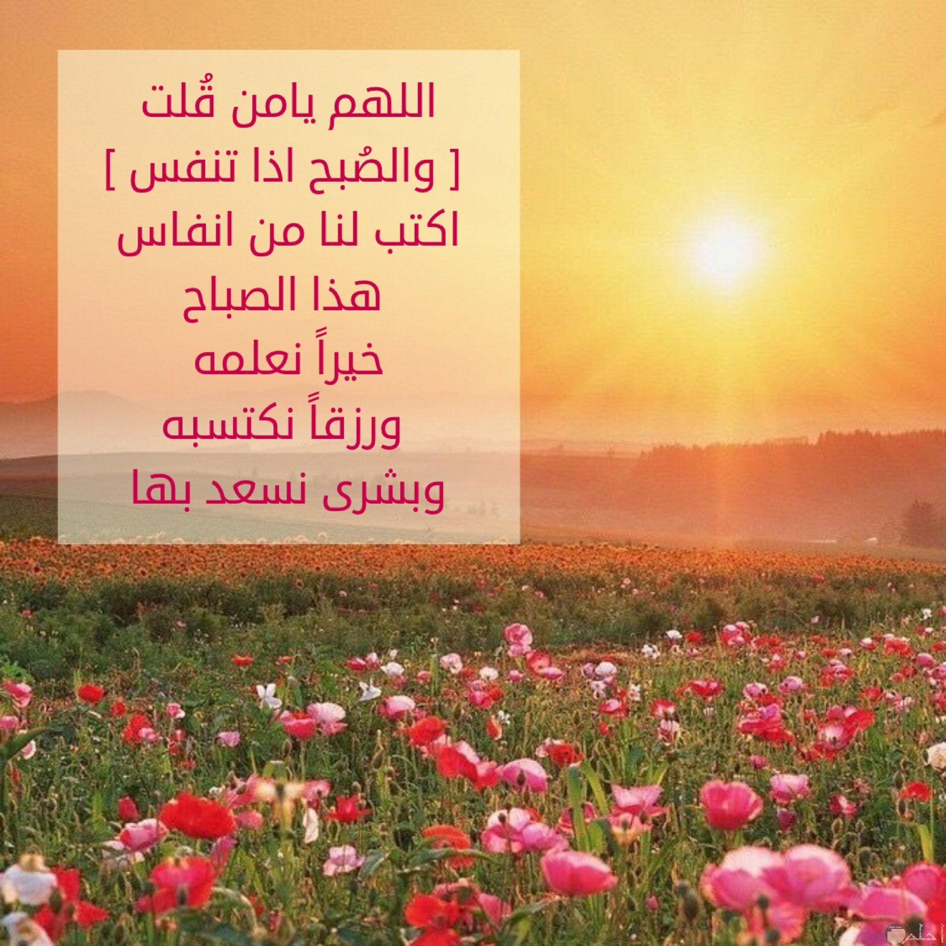 اللهم يامن قلت والصبح اذا تنفس اكتب لنا من انفاس هذا الصباح خيرا نعلمه