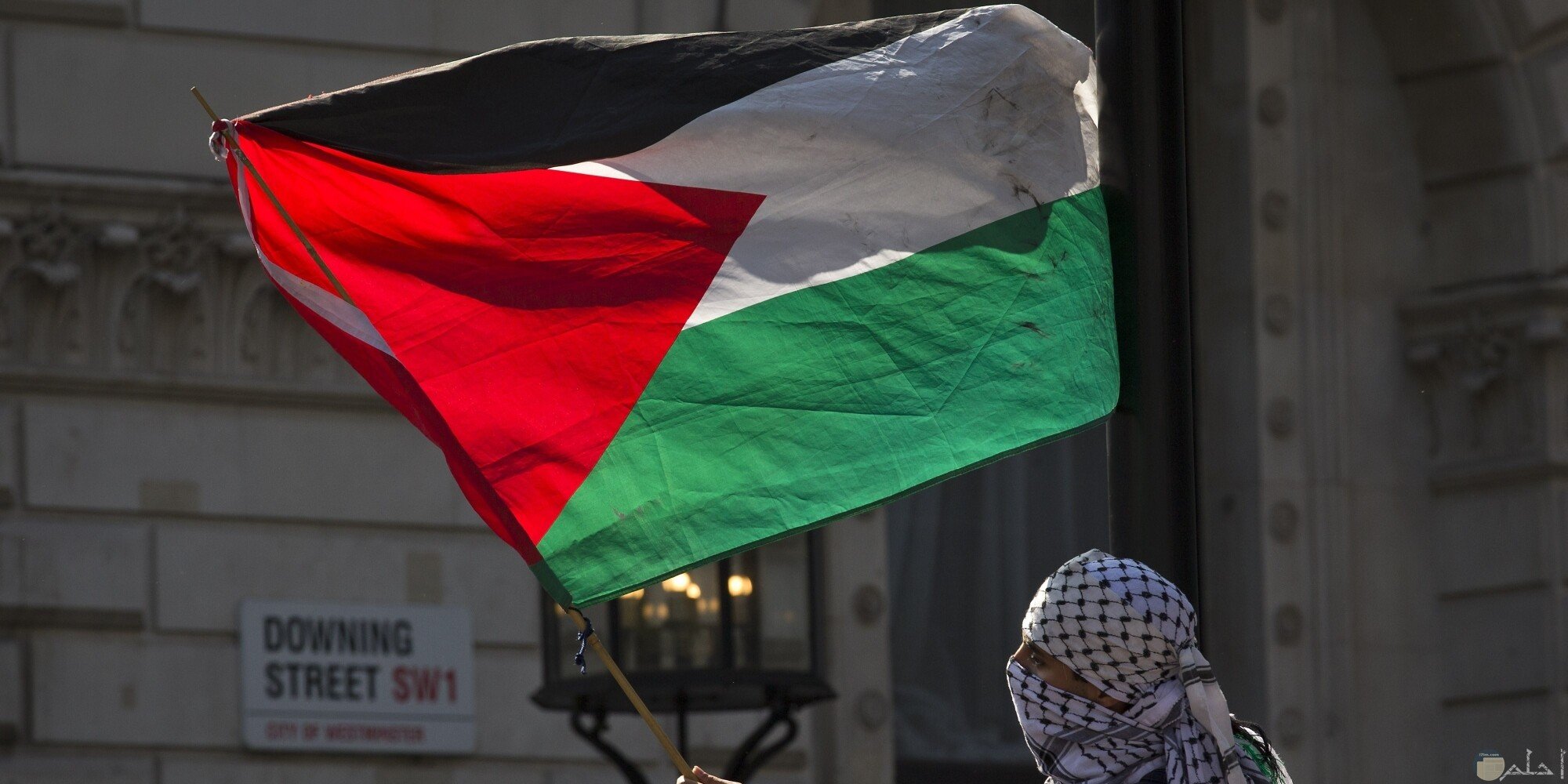 علم فلسطين يحملة رجل ويلوح به