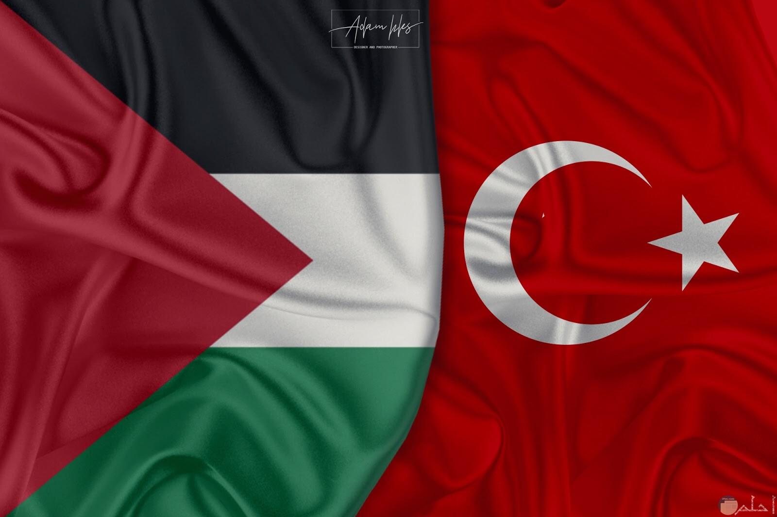 صورة مبهرة لعلم فلسطين