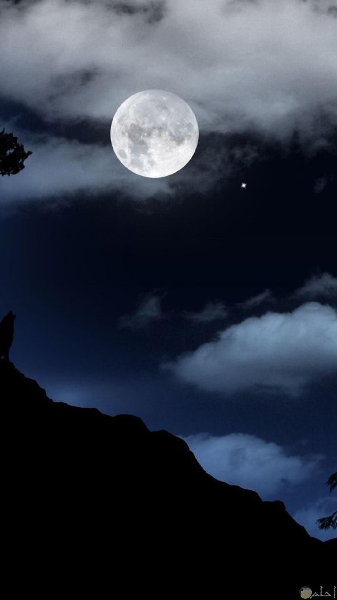 صورة حلوة للقمر ممتعة المظهر.