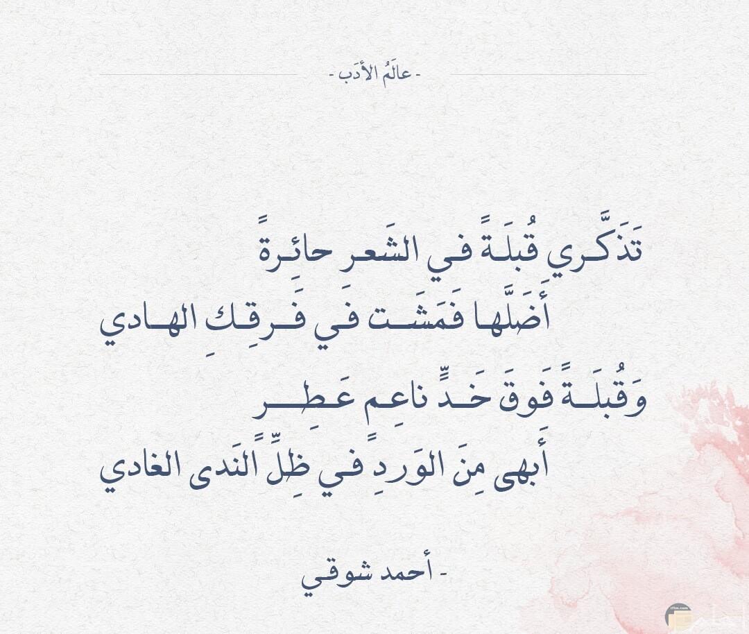تذكرى قبلة فى الشعر حائرة أضلها فمشت في فرقك الهادي